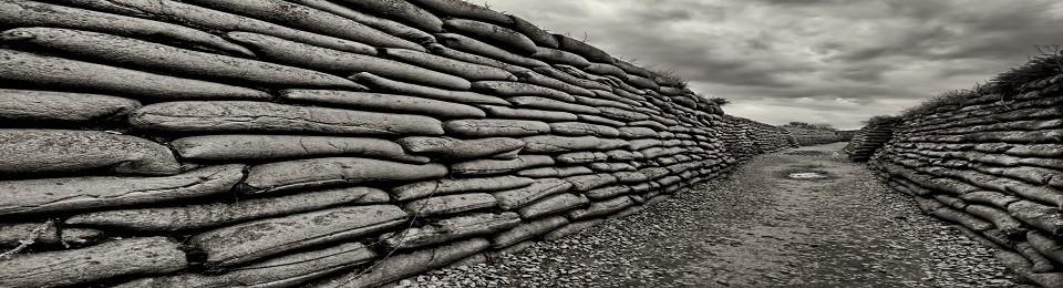 Askerlerin Tarihi